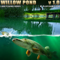 Willow Pond Fishing